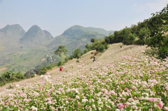 Ha Giang, Vietnam: Dong Van Karst Plateau