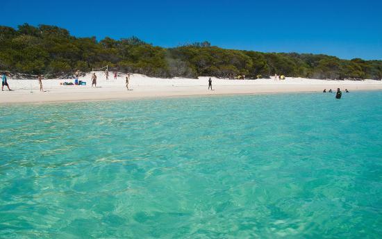 Southern end beach (119109053)
