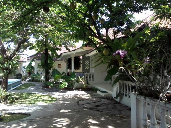 Gardenia Guesthouse: Gardenia December 21, 2014