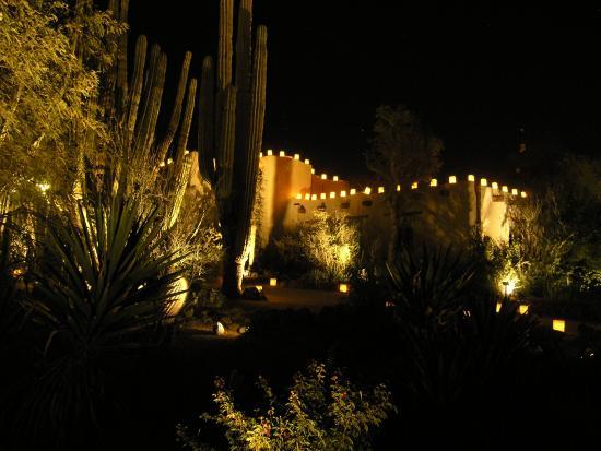 Building With Luminarias Picture Of Desert Botanical Garden Phoenix Tripadvisor