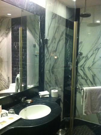 WelcomHotel Bella Vista: Bathroom View