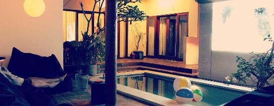 Homestay Bali Starling: Pool and Rooms