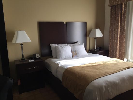 Comfort Suites Byron: Heaven