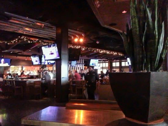 Yard House Restaurant: The bar