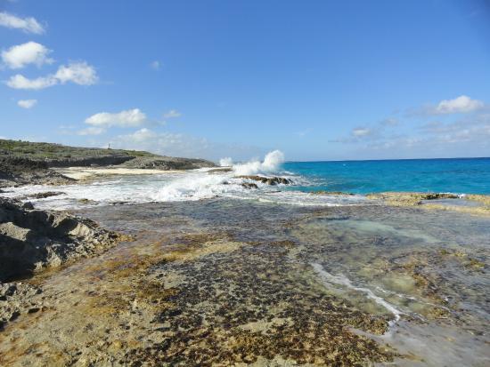 Stella Maris Resort Club : Atlantic Side Beach View