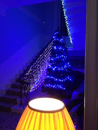 Thorpe House Bed & Breakfast: Christmas in the hall of thorpe house hotel