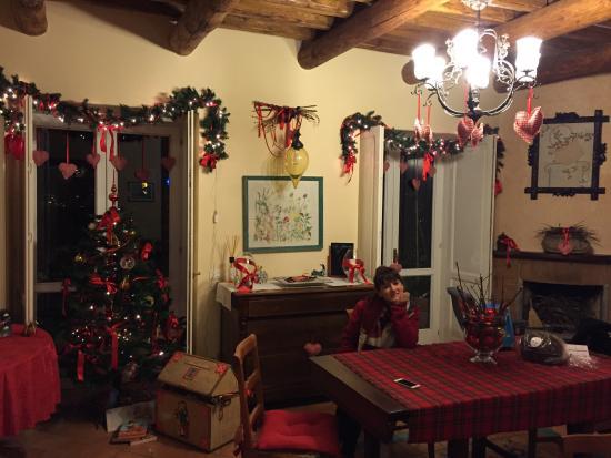 Gattacicova : Dicembre a gatta ci cova ✌️