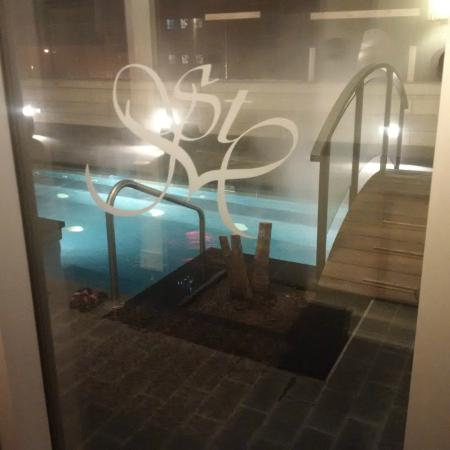 Le St-Martin Hotel Particulier Montreal: Pool