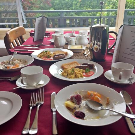 The Downs B & B: Delicious hot and cold breakfast, don't miss the pancakes