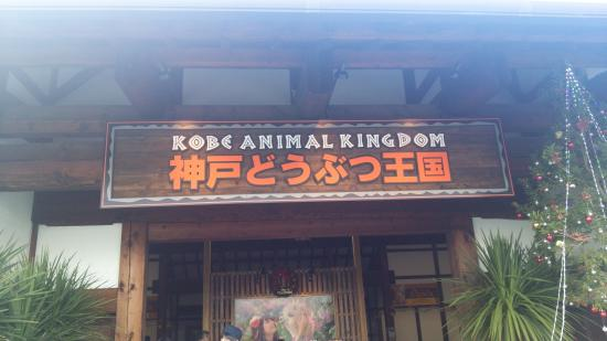 神戸どうぶつ王国 - Photo de Kobe Animal Kingdom, Kobé - TripAdvisor