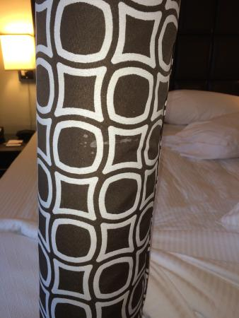 Crowne Plaza Orlando Downtown: This is what I found on my bed.