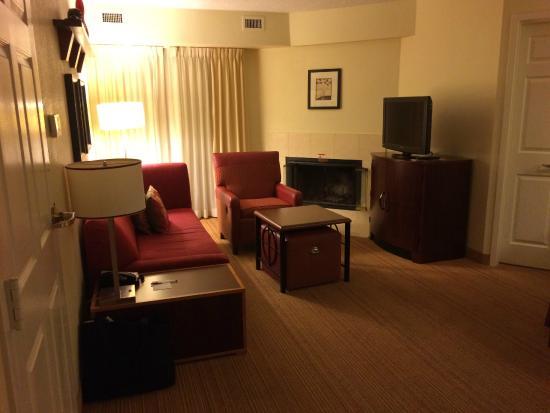 Residence Inn Tampa North/I-75 Fletcher: Liv Room