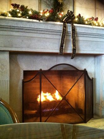 Jasmine Lounge: Crackling - not real though but a good gas fire effect