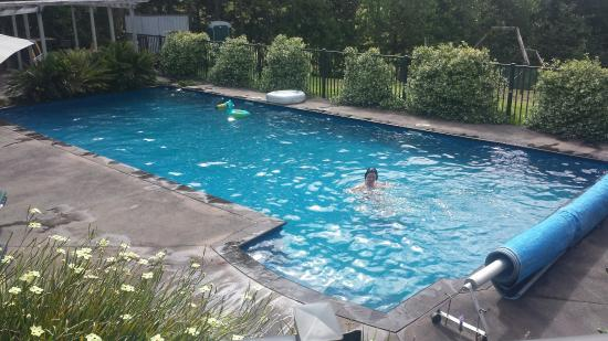 Sunhill Cottages : Pool all to myself