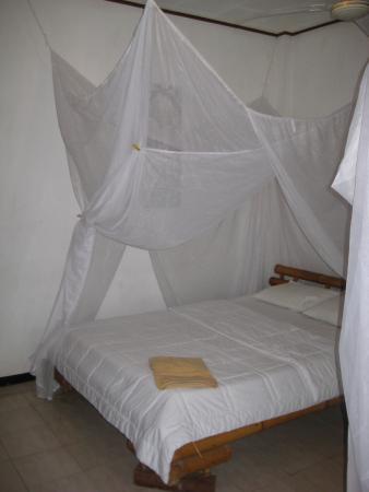 Alamanda Accommodation: вид номера