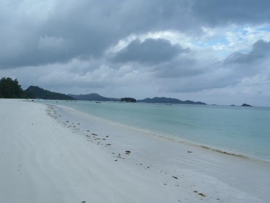 Laurier Guest House : une plage vide...