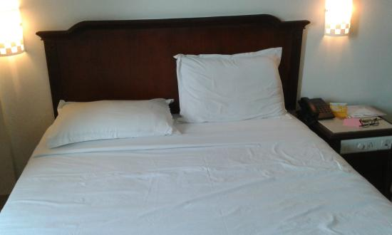 Arcadia Regency Hotel Alleppey: The Old Style Double Bed