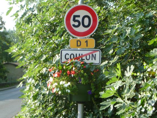 Hotel Le Central: coulon