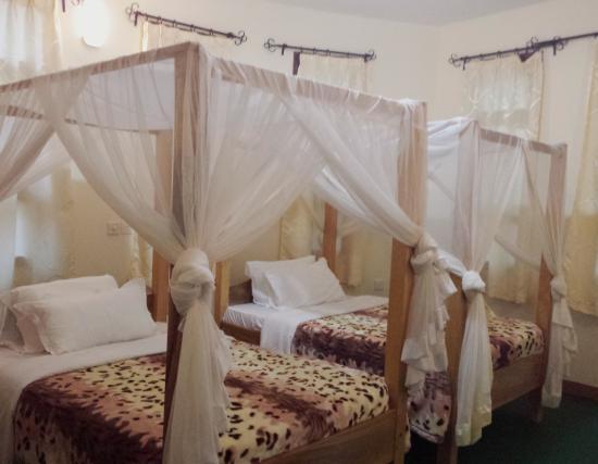 Flamingo Safari Lodge & Camp Site: Twin bed. was my room