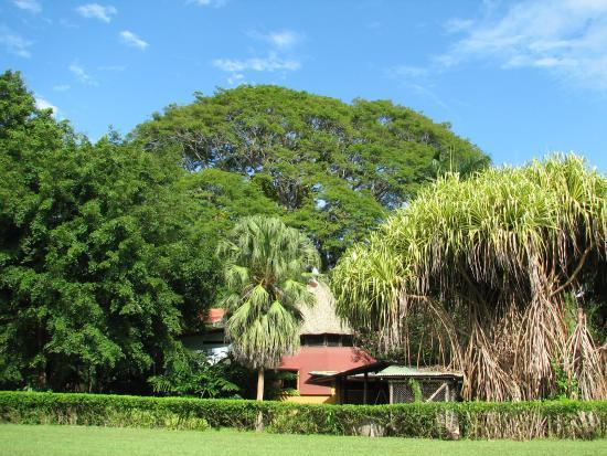Hotel Flying Crocodile: Blick über die Landebahn auf die Anlage