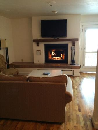 Hotel Pacific: Fireplace and tv sitting area