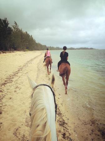 St. Felix: Beach Ride 01
