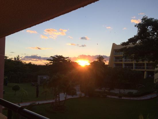 Meliá Cozumel Golf - All Inclusive: Garden sunrise