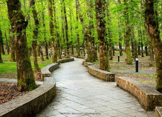 Alenquer, Portugal: Caminhos