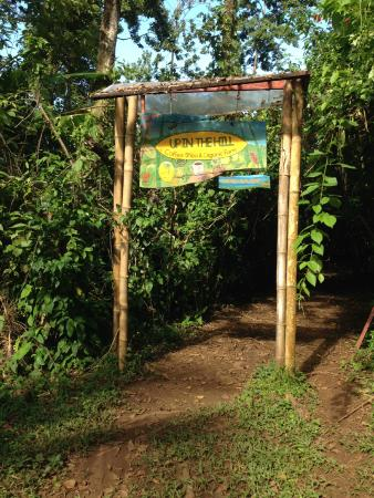 Up in the Hill - Coffee Shop & Organic Farm: The first entrance to Up in the Hill
