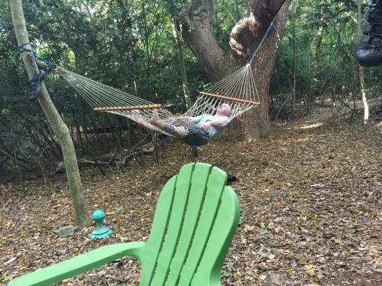 Cane Bay Campground, Virgin Islands: I could hardly get my husband out of the hammock