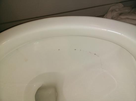 Jameson Suites Augusta: Dirty toilet bowl