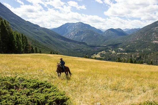 Hawley Mountain Guest Ranch: High Meadows, le Yellowstone au loin