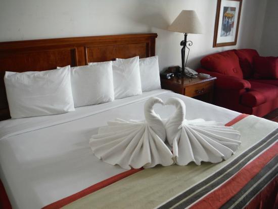 Hotel Las Palomas De Santiago: King sized bed with swans