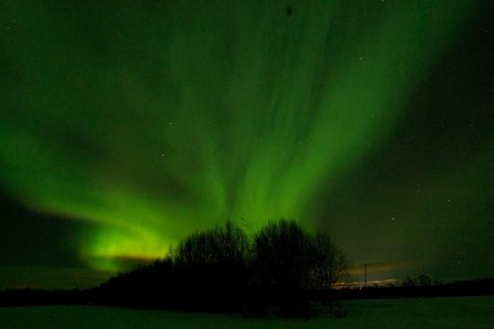 BIRK Husky Accommodation B&B & cabins: A perfect place to be to see the Aurora Borealis - northern lights