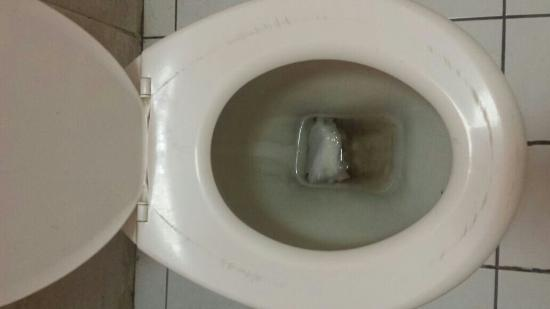 Backpackers In Paradise : Filthy toilet