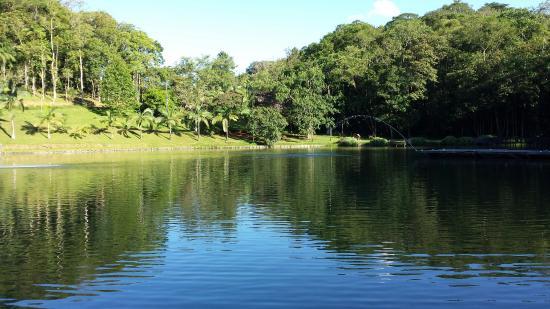 Rio dos Cedros, SC: Lago