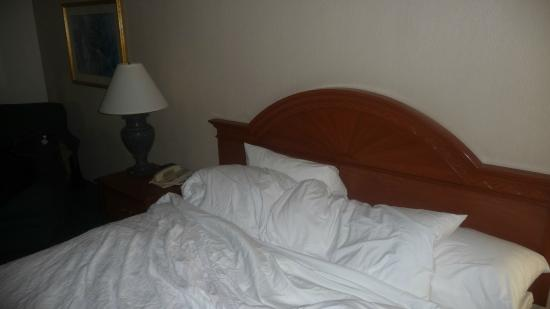 Hilton Garden Inn Owings Mills: Comfortable Bed!