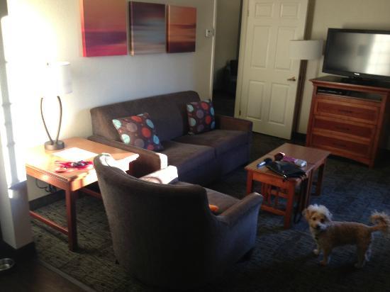 Staybridge Suites San Diego Rancho Bernardo Area: Two bedroom Suite, common area.  Suite had 3 TVs.