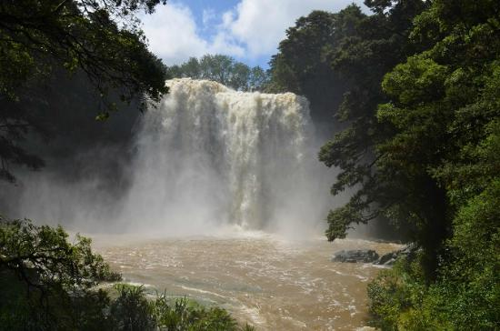 Front view of the Whangarei Falls