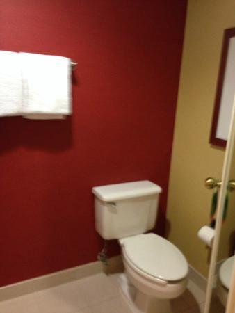 Courtyard Milwaukee Brookfield: bathroom