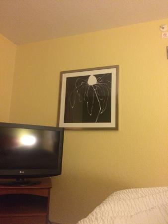 TownePlace Suites by Marriott Falls Church: View from the bed