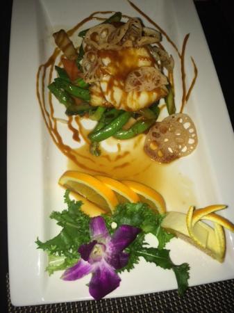 Zen Fusion Cuisine