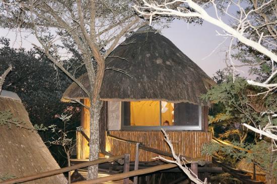 Pezulu Tree House Game Lodge: Voorbeeld lodge