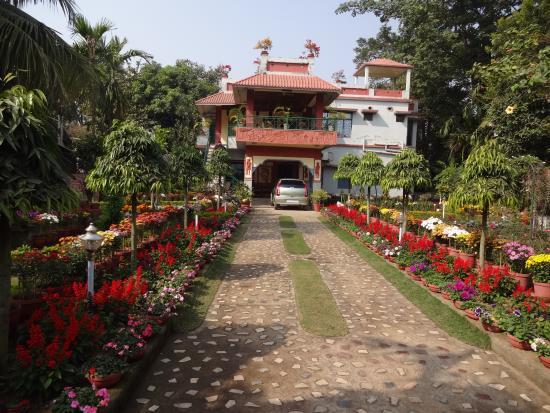 Rater Tara Diner Rabi Resort: GUEST HOUSE