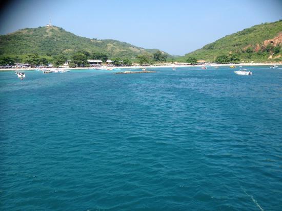Jomtien Dive Center: Diving area