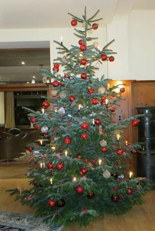 Hotel Engadinerhof: Weihnachtsbaum