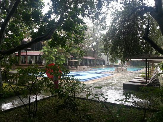 Cinnamon Lodge Habarana: Swimming pool
