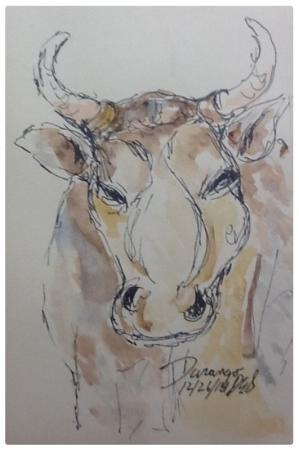 Durango's Steakhouse : Sit next to the three cows