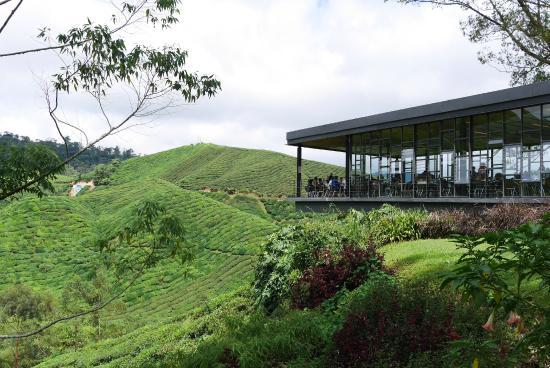 Titiwangsa Tours & Travel