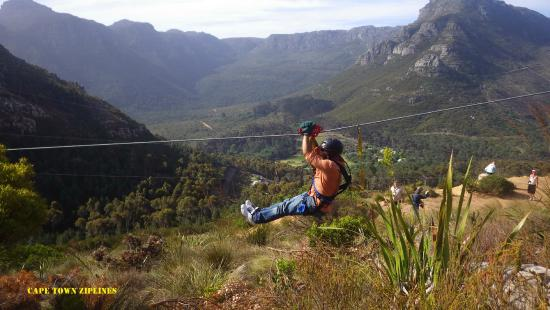 SA Forest Adventures Cape Town Ziplines